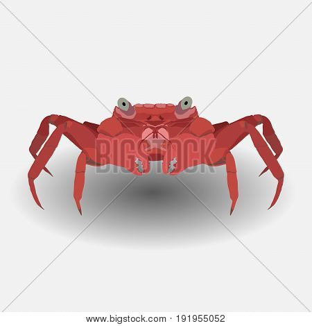 red c rab flat design image sea animal