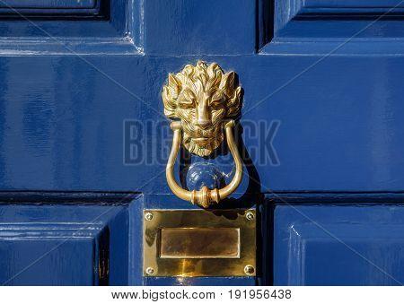 Brass Lion Head Door Knockers