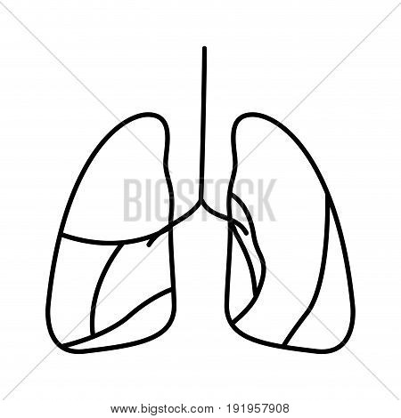 hand drawing contour respiratory system vector illustration