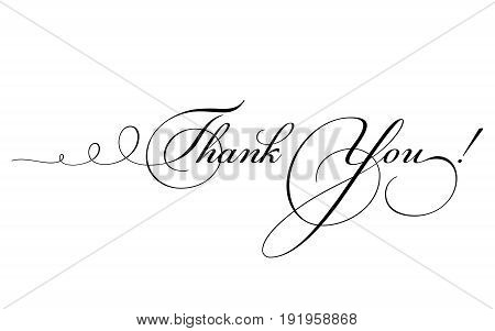 Thank You Card. Vector Calligraphy With Swirl.