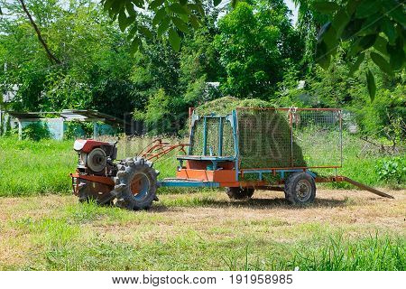 Old tractor with grass or hay on trailer for livestock agriculture vehicle.