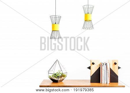 Close up of vase with domestic plant and wooden decorative birds with stack of books between them on table surface. Lusters hanging over workplace. Isolated