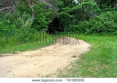 rural dirt road curving into lush green woodland