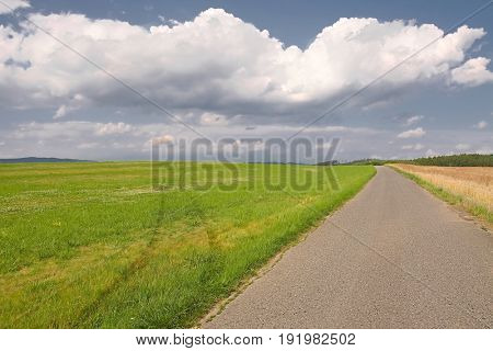 Narrow road through agricultural fields