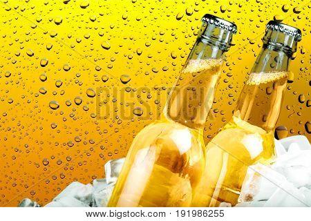 Cold bottles bar pub yellow nobody glass