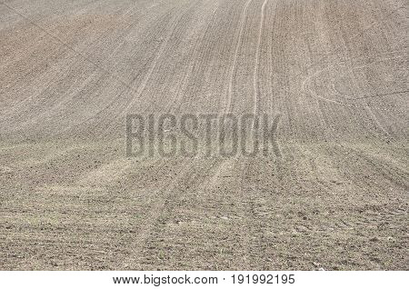 a background of plowed field in the polish village