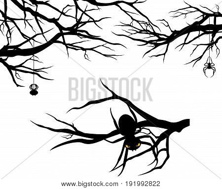 tree branches and spiders - halloween theme vector design set