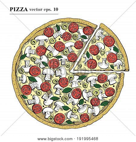 Italian Pizza hand drawn vector illustration. Can be use for pizzeria, cafe, shop, restaurant.