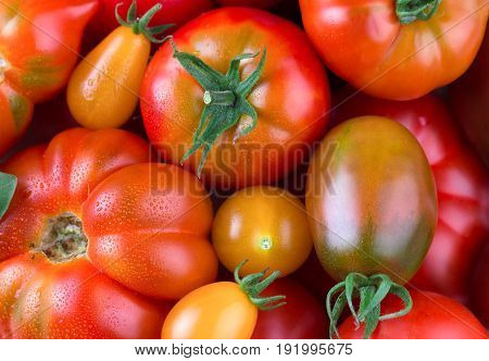 Delicious red tomatoes. A pile of tomatoes. Farmers market concept. Colorful organic tomatoes. Fresh tomatoes. It can be used as background.