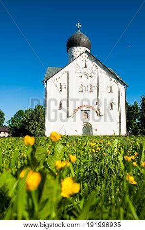 Architecture view of ancient medieval church of the Transfiguration of Our Savior on Ilin street in Veliky Novgorod Russia architecture summer landscape with dandelions on the foreground.Architecture view of Veliky Novgorod Russia