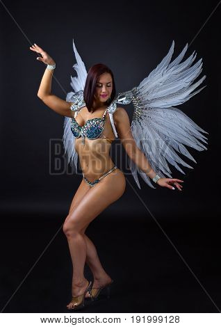 Beautiful Girl In Carnival Costume Wit White Wings.