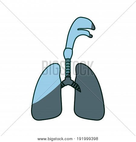 blue color shading silhouette respiratory system with windpipe vector illustration