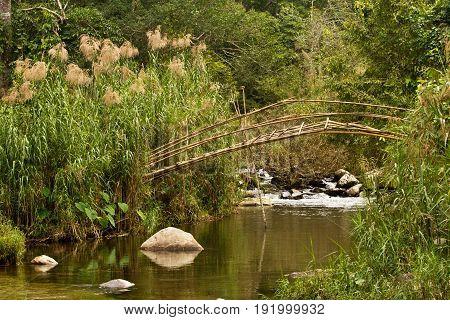 bamboo bridge in a nice scenery landscape in laos