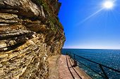Path to the beautiful adriatic beach poster