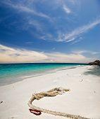 White sand tropical beach. Photographed on uninhabited island Tulai, near Tioman island. Malaysia poster