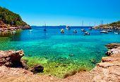 Sailboats at Cala Salada lagoon. Idyllic scenery. Ibiza Balearic Islands. Spain poster