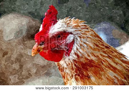 Chicken, Portrait. Painting Wet Watercolor On Paper. Naive Art. Abstract Art. Watercolor On Paper.