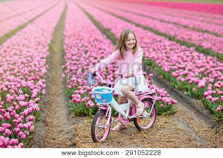 Child On Bike In Tulip Field. Bicycle In Holland.