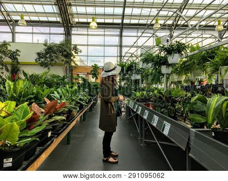 St. Albert, Alberta, Canada - March 23rd, 2019: A Young Elegant Woman Browsing An Aisle Of Fresh Pla