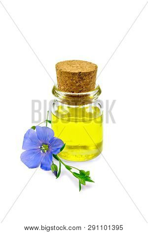 Oil Linenseed With Flower