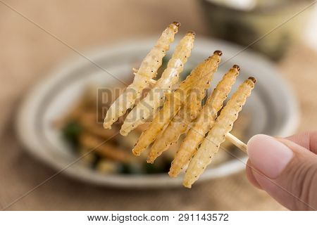 Food Insects: Woman's Hand Holding Bamboo Worm Caterpillar Insect Fried Crispy For Eating As Food It
