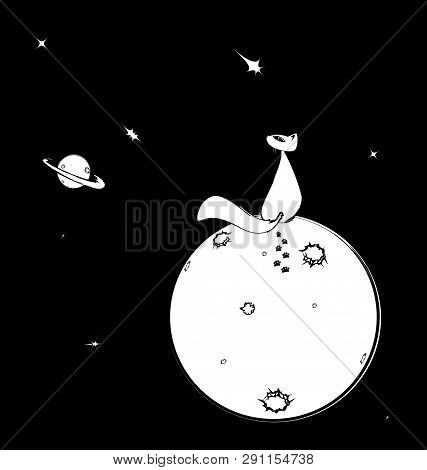 Black White Background Image Of Space With Abstract Cat