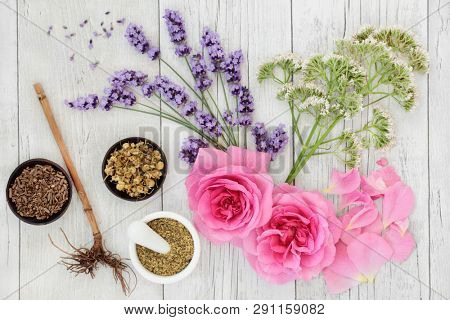 Lavender, chamomile, rose, elderflower and valerian herbs. Used in alternative & traditional herbal medicine with the roots & flowers having  many health benefits. Top view on rustic wood background.