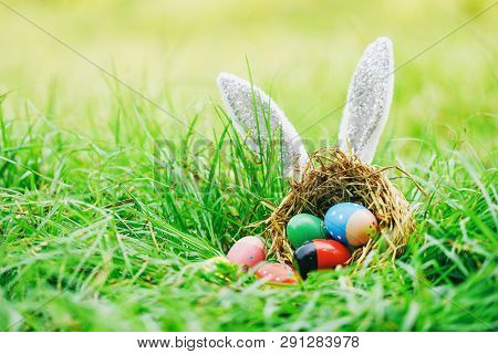 Easter Bunny Hunt Easter Eggs On Green Grass Outdoor / Colorful Eggs In The Nest Basket And Ear Rabb