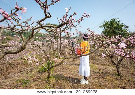 Chengdu, Sichuan Province, China - March 20, 2019: Chinese Girl With A Flower Crown Enjoying Peach B