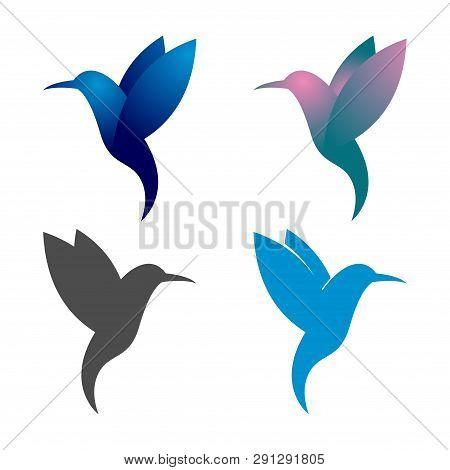 Colorful Hummingbird Colibri Bird Flying Logo Symbol