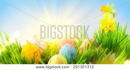 Easter Eggs background. Beautiful colorful eggs in spring grass meadow over blue sky with sun border design. Screen backdrop, wallpaper art design with copy space for your text. Easter scene