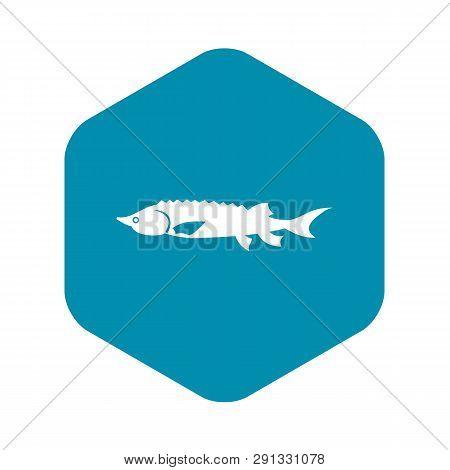 Fresh Sturgeon Fish Icon In Simple Style Isolated Vector Illustration