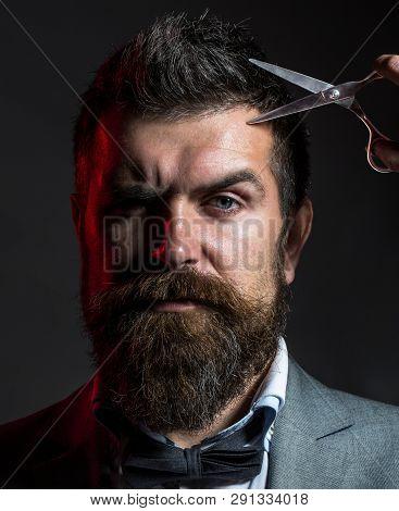 Male In Barbershop, Haircut, Shaving, Mans Haircut In Barber Shop Portrait Of Stylish Beard Man, Sci