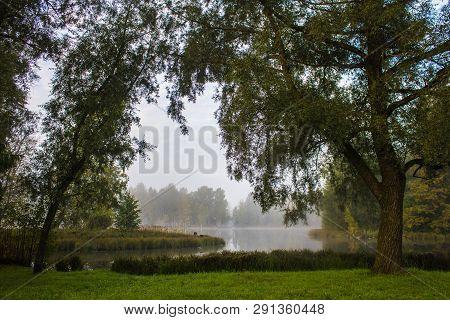 Morning Misty Autumn Park. Misty Morning. Fog In The Park. Picture Autumn Park. Background Foggy Aut
