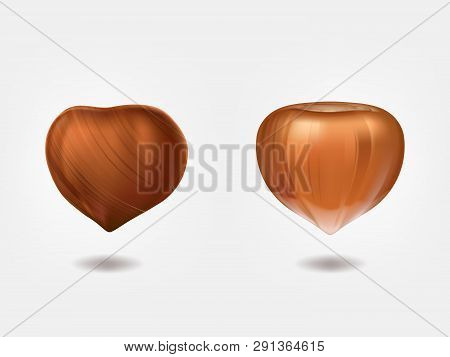 Ripe And Raw Hazelnuts Front View 3d Realistic Vector Isolated On White Background. Filbert Edible S