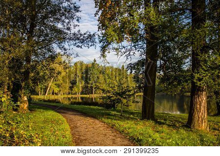 Morning Autumn Park. Picture Autumn Park. Park At Sunrise In The Fall. Sunny Morning. Beginning Of A