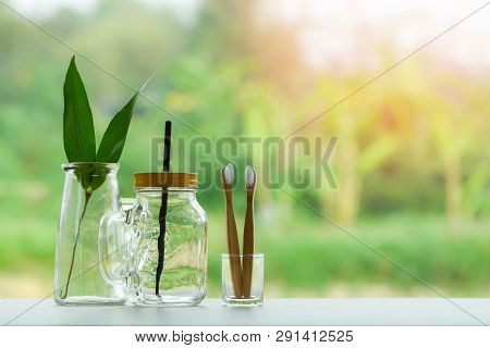 Zero Waste Use Less Plastic Concept / Eco Green Leaf In Water Glass Jar With Straw Pitcher Vase And