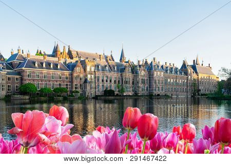 Facade Of Binnenhof - Dutch Parliament With Reflections In Pond, The Hague At Spring With Tulips Flo