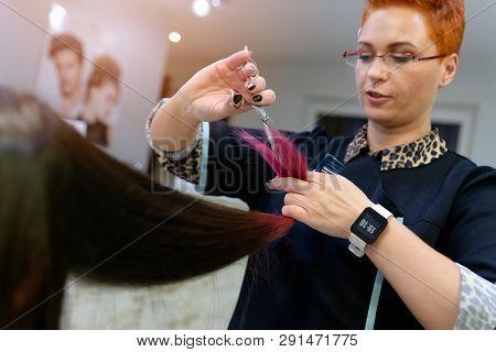 Woman Hairdresser Cutting Customer Hair With Scissors. Female In Hairdresser Salon