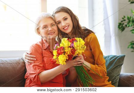 Happy Mother's Day! Adult Daughter Gives Flowers And Congratulates An Elderly Mother On Holiday