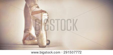 Ballerino practising ballet dance in the studio, Close-up