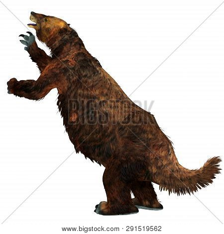 Megatherium Sloth Tail 3d Illustration - Megatherium Was A Herbivorous Giant Ground Sloth That Lived