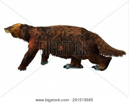 Megatherium Sloth Walking 3d Illustration - Megatherium Was A Herbivorous Giant Ground Sloth That Li