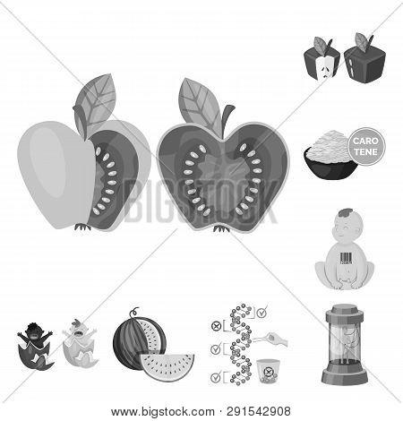 Vector Illustration Of Transgenic And Organic Symbol. Collection Of Transgenic And Synthetic Vector