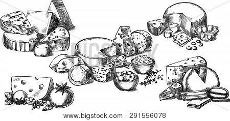 Creative Conceptual Vector Set. Sketch Hand Drawn Different Sorts Of Cheese Tomato Spices Illustrati