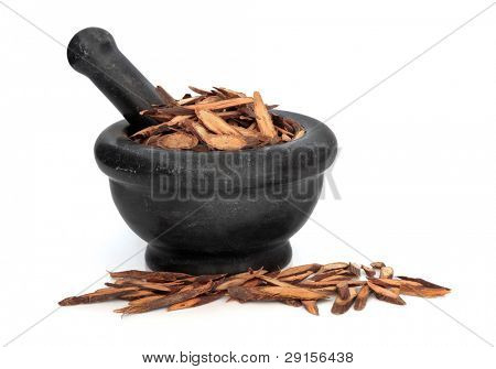 Fleece flower stem used in traditional chinese herbal medicine in a black marble mortar with pestle isolated over white background. Ye jaio teng. Caulis polyoni multiflori.