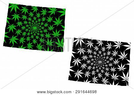 Colorado (united States Of America, Usa, U.s., Us) -  Map Is Designed Cannabis Leaf Green And Black,