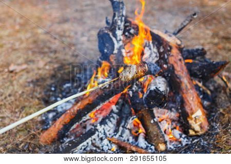 A Man Fries Sausages Against The Grass On A Campfire In The Spring Forest. In The Frame Of One Hand.