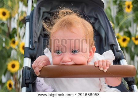 Baby Vehicles. Baby Girl Sitting In Stroller With Sun Flowers On Background. Sitting And Waiting For