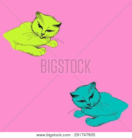 Vector Artistic Natural Cat Scetch Drawning Pattern